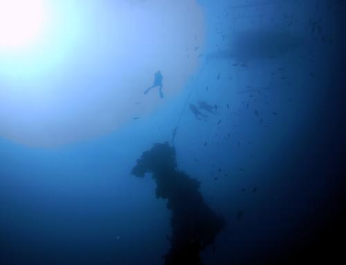 Get wrecked – Wracktauchen extrem in den Philippinen und Truk Lagoon (Tauchtage 4,5,6)