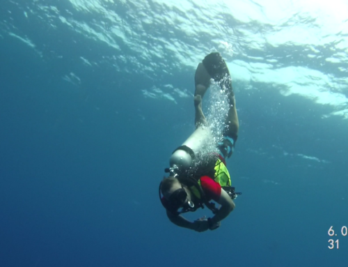 Valet Diving – Wieviel Service braucht man zum Tauchen